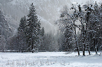 20021220 -- .Michael McCollum.Valley floor in winter in spectacular Yosemite National Park.