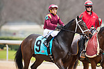 February 17, 2020: Answer In (9) with jockey Javier Castellano aboard during the Southwest Stakes at Oaklawn Racing Casino Resort in Hot Springs, Arkansas on Feburary 17, 2020. Ted McClenning//Eclipse Sportswire/CSM