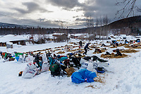 Teams rest on a hillside at the Takotna checkpoint durig their 24-hour layover on Wednesday afternoon during the 2018 Iditarod Sled Dog Race -- Alaska<br /> <br /> Photo by Jeff Schultz/SchultzPhoto.com  (C) 2018  ALL RIGHTS RESERVED