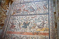 Wide picture of the Roman mosaics of the Room of the Chidrens's Hunt depicting children hunting animals, room no 44 at the Villa Romana del Casale, first quarter of the 4th century AD. Sicily, Italy. A UNESCO World Heritage Site.<br /> <br /> The Roman mosaic on the floor of the cubicle of the Child Hunt in the Villa Romana del Casale is divided into three registers with a floral theme.<br /> <br /> In the first register boys are spearing a hare with a venabulum ( spear) while to their right another boy has trapped a duckling. <br /> <br /> In the second register tree young hunters are portrayed being attacked by animals, one boy has fallen down having been bitten on the calf by a weasel. The boy in the middle has his hands raised calling for help and to his right a boy is about to be attacked bu a cockerel.<br /> <br /> In the lower register a boy is holding a raised club about to hit a peacock while another boy is spearing a goat and another is using a shield to protect himself from a Great Bustard.
