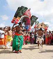 Nederland Den Helder  2016  06 26. Jaarlijkse tempelfeest bij de Hindoe tempel in Den Helder.. Vereniging Sri Varatharaja Selvavinayagar voltooide in 2003 het gebouw dat wordt gebruikt voor het bevorderen van kunst en cultuur. Een ander deel wordt gebruikt voor het praktiseren van religieuze waarden. Het hoogtepunt van de feestperiode is het voorttrekken van de wagen ( chithira theer of ratham ). Dit is een kleurrijke optocht, waarbij de godheid Ganesh in de wagen wordt voortgetrokken door gelovigen. Rituele dans voor de tempel. Bij enkele mannen zijn haken in de rug bevestigd.  Foto Berlinda van Dam /  Hollandse Hoogte