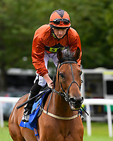 Red Dragon ridden by Rob Hornby goes down to the start of the Dartmouth General Contractors Ltd Handicap (Div 1),  during Afternoon Racing at Salisbury Racecourse on 7th August 2017