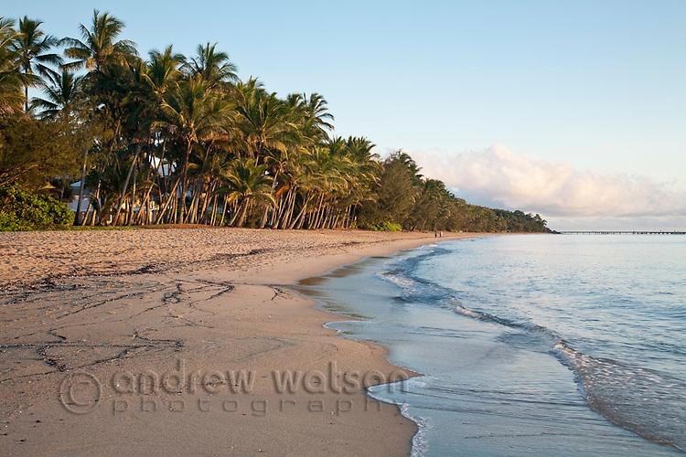 View along beach at dawn.  Palm Cove, Cairns, Queensland, Australia