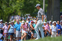 Rory McIlroy (NIR) looks over his chip shot on 8 during 3rd round of the 100th PGA Championship at Bellerive Country Club, St. Louis, Missouri. 8/11/2018.<br /> Picture: Golffile | Ken Murray<br /> <br /> All photo usage must carry mandatory copyright credit (&copy; Golffile | Ken Murray)
