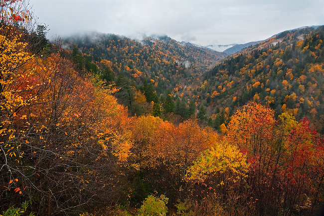 Autumn vista as viewed from Morton's Overlook