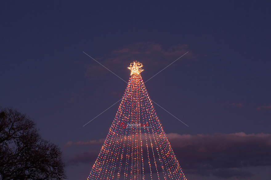 ... Zilker Park Christmas tree.jpg. If you missed the tree lighting  ceremony don't worry, the tree will be - Beautiful Evening To Visit The Majestic Zilker Park Christmas Tree