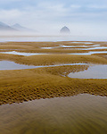 Pools of water are seen among the sandy beach at low tide with Haystack Rock in the background with morning mist in the air with hints of blue in the cloudy sky in Cannon Beach, OR. in this portrait rendition