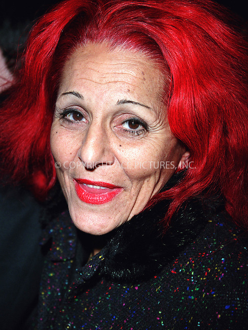 """Redheaded costume designer PATRICIA FIELD who makes trend-setting fashions for HBO's """"Sex and the City"""" arrives at the Calvin Klein Fashion Show in New York. February 15, 2002. ..© 2002 by Alecsey Boldeskul/NY Photo Press.   ..*PAY-PER-USE*      ....NY Photo Press:  ..phone (646) 267-6913;   ..e-mail: info@nyphotopress.com"""