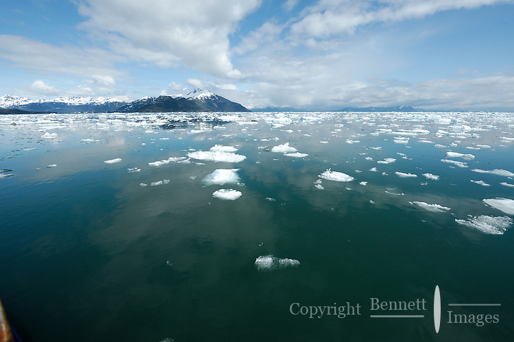 Bergy bits and brash ice float in Glacier Passage, with the Chugach Mountains in the background, in Prince William Sound, Southcentral Alaska on a sunny spring day in early May.