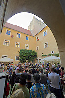 "Gars am Kamp, Lower Austria. Kunstraum Buchberg at Buchberg castle. Opening of the permanent installation ""cinéma"" (2014) by Dorit Margreiter."