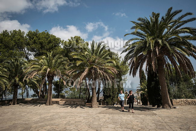 Palms at the entrance to Monastery of Bonany, Es Pla, Mallorca. Bonany was the site of the last sermon of Fr. Junipero Serra before leaving for the Mexico and California in 1735...Santuario de la Mare de Deú de Bonany was originally constructed in the XVII. century.