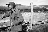 SWEDEN / Parka / 11.08.2000..Anders Omma, a Saami reindeer herder takes rest from herding at the autumn herd separations at a camp near Jokkmokk, Sweden above the Arctic Circle. The Saami are Northern Europe's indigenous people and live in each of the Scandinavian countries as well as on the Kola Peninsula in Russia. Since being subjugated by the Norwegian and Swedish governments in the 1600s and converted to Christianity, they continue to fight an uphill battle to retain their grazing lands and traditional way of life. ..© Davin Ellicson / Anzenberger.