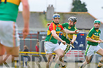 Darren Dineen Kerry and Paudie KehoeCarlow in action during their Allianz Hurling league clash in Fitzgerald Stadium on Sunday