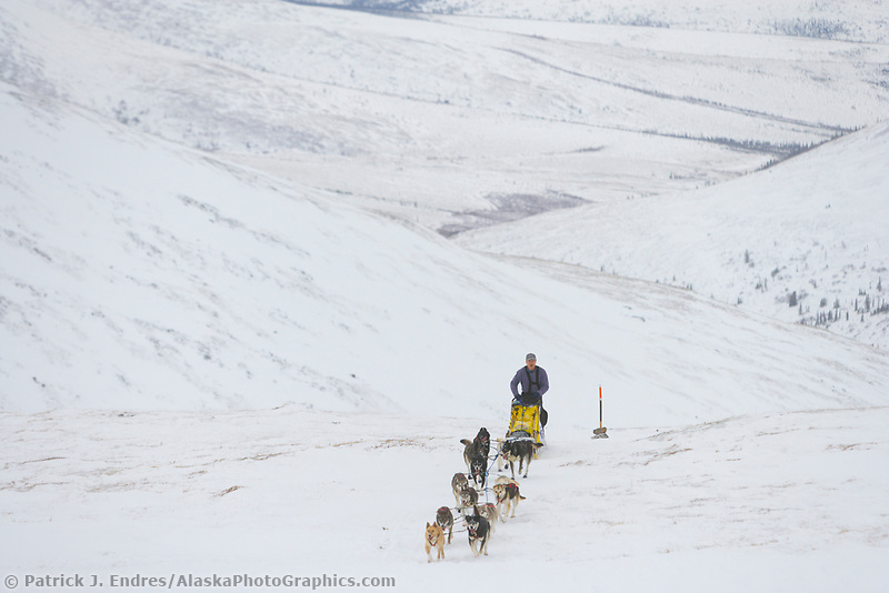 2006 Yukon Quest musher William Kleedehn on Eagle Summit en route to Central.
