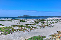 Coronado; Sasnd Dunes San Diego; California; beachfront; luxury;  Island; Historical
