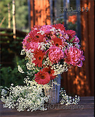 Carl, FLOWERS, nature, photos, SWLA, SWLA899,#F# Blumen, Natur, flores, naturaleza