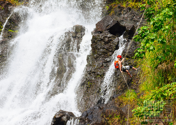 A man rappels down the right side of Kulaniapia Falls, Big Island of Hawai'i.