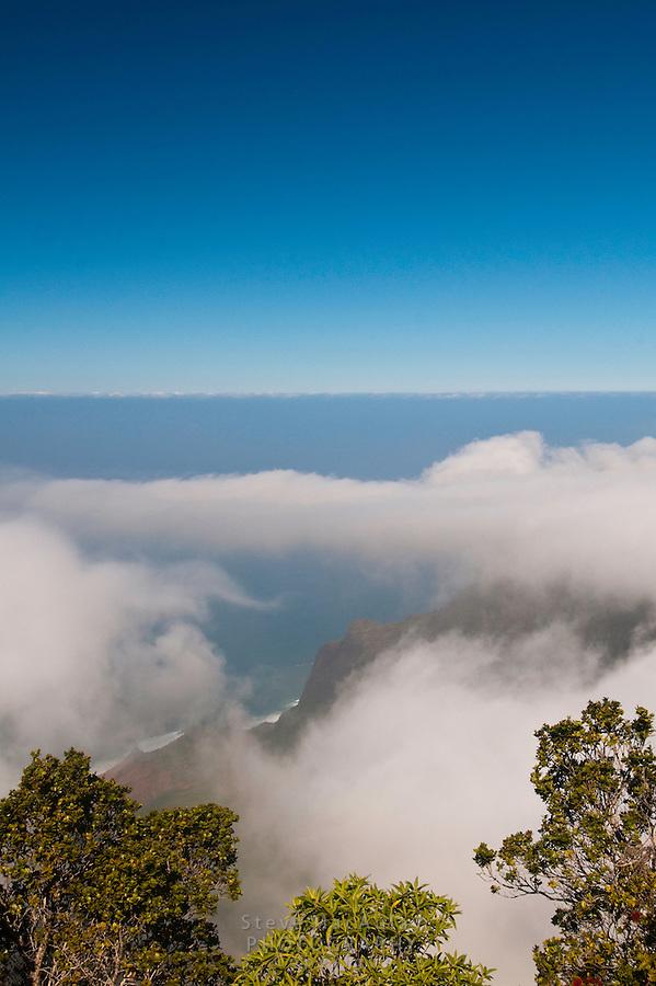 View of Napali Coast from Pu'uokila Lookout, Waimea Canyon, Kauai, Hawaii