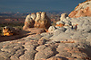 Unusual rock formations produced through millions of years of erosion form the landscape at White Pocket at Vermilion Cliffs National Monument, Arizona