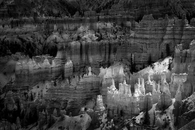 Hoodoos in Bryce National Park, Utah