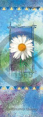 Jacek, FLOWERS, portrait, macro, photos, PLSE, PLSEbak37,#F# Blumen, flores, retrato