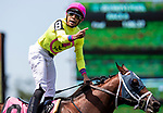 "JUNE 08: World of Trouble with Manny Franco up wins Jaipur Invitational, a Breeders' Cup ""Win and You're In"" event at Belmont Park in Elmont, New York on June 07, 2019. Evers/Eclipse Sportswire/CSM"