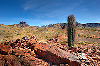 Kofa mountains, Arizona.