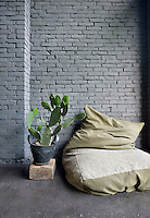 An informal cushion seat rests against a grey painted brick wall. Beside it, a cactus plant in a pot rests on a brick.