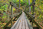 A Rickety Wooden Foot Bridge Over A Stream In A Forest Ablaze With The Colors Of Autumn, Glen Helen Nature Preserve; Yellow Springs Ohio, USA
