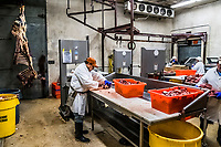 A worker processes meat at Uvalde meats on 17th of August, 2017 in Uvalde, Texas, USA. <br /> Photo Daniel Berehulak for the New York Times