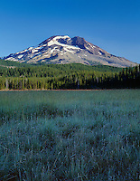 ORCAC_026 - USA, Oregon, Deschutes National Forest, South Sister rises above frost-rimmed grasses.