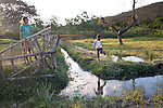 Not far from Remexio, Plan is also supporting young people to farm fish in local pools like this one.