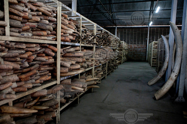 Tanzania's ivory stockpile held in a Dar Es Salaam warehouses.