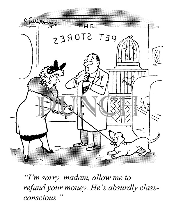 """I'm sorry, madam, allow me to refund your money. He's absurdly class-conscious."""