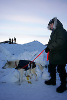 "Sunday March 11, 2007   ----   Volunteer drug tester, known as the "" P-Team"",  Melanie Hull gets a urine sample from a Lance Mackey dog at the Unalakleet checkpoint on Sunday evening."