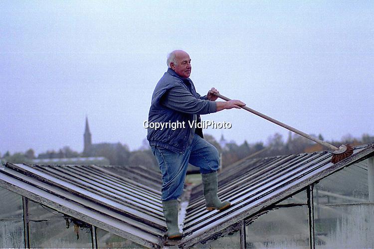 Foto: VidiPhoto..LENT - Eenmaal per jaar, halverwege de herfst, moet geraniumkweker H. Kuling aan de Oosterhoutsedijk in Lent het dak op om de goot van zijn kassen schoon te maken. Daarmee voorkomt hij dat het opgehoopte vuil tijdens de vorstperiode zijn glazen daken vernielt. Het bedrijf van Kuling wordt waarschijnlijk binnen nu en vijf jaar gesloopt. Op die plek is namelijk een nieuwe rivierarm gepland, dat bij een hoge waterstand het Waalwater moet opvangen. Volgende maand komt daarover meer duidelijkheid.