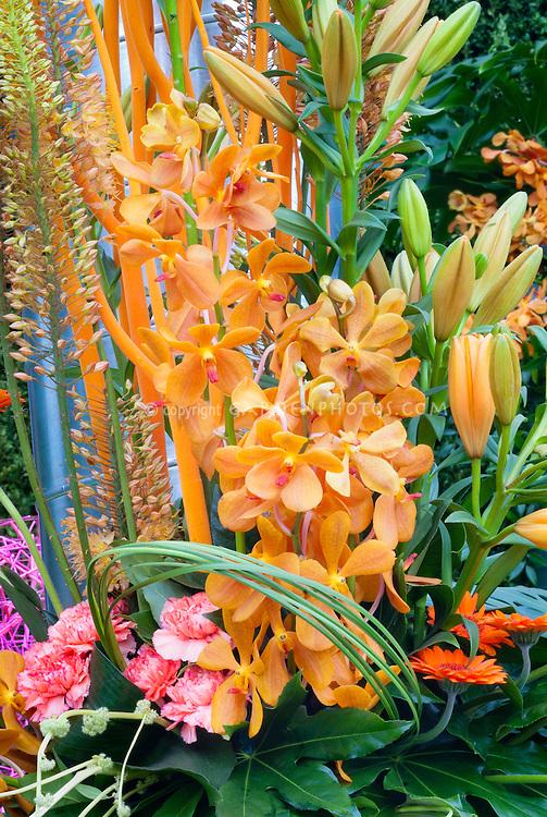 Orange Orchid Flower Arrangement, Mokara, with Dianthus, Lilium, Eremurus, Gerbera in shades of orange and pink