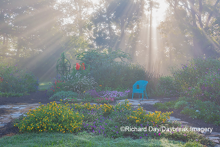 63821-23714 Sun rays in fog in flower garden, Marion Co., IL