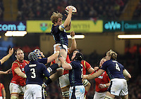 during the RBS 6 Nations Championship rugby game between Wales and Scotland at the Principality Stadium, Cardiff, Wales, UK Saturday 13 February 2016