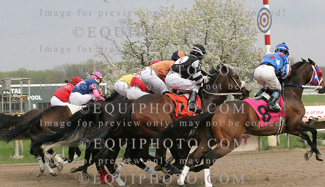 Action at Parx Racing in Bensalem, Pennsylvania April 1, 2012.  Start of Race 9.  Photo By Alyssa Spakowski/EQUI-PHOTO.
