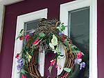 American robin nesting on front door of house  Turdus migratorius
