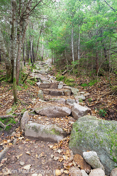 Stone staircase along the Mt Tecumseh Trail in the White Mountains of New Hampshire. This hiking trail leads to the summit of Mount Tecumseh.