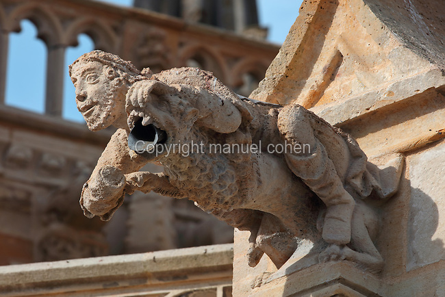 Gargoyle in the form of a man and lion, on the facade of the Basilique Notre-Dame de l'Epine, or Basilica of Our Lady of the Thorn, L'Epine, Marne, Champagne-Ardenne, France. The church was built 1405-1527 in Flamboyant Gothic style, is listed as a historic monument and as a UNESCO World Heritage Site as part of the Santiago de Compostela pilgrimage site. Picture by Manuel Cohen