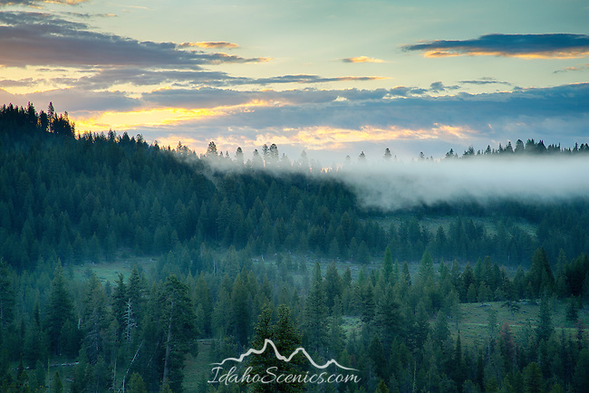 Idaho, West Central, New Meadows. Dawn in the Payette National Forest.