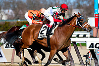 NEW YORK, NY - APRIL 08: Send It In [#2], ridden by  John Valazquez surges in the final furlong and wins the Excelsior Stakes at Aqueduct Racetrack on April 8, 2017 in Ozone Park,  New York. (Photo by Dan Heary/Eclipse Sportswire/Getty Images)