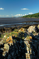 Ross Bay from Kirkcudbright, Dumfries and Galloway<br /> <br /> Copyright www.scottishhorizons.co.uk/Keith Fergus 2011 All Rights Reserved