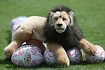 British & Irish Lions training session.The Lions mascot.Vale Resort.15.05.13.©Steve Pope