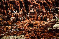 Landscape photos of Arches National Park, Utah
