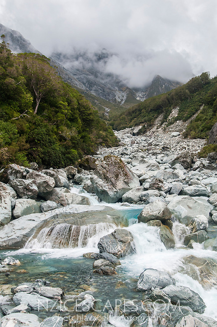 Butler River South Branch in Whataroa Valley, South Westland, West Coast, New Zealand