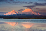 Payachata Volcanoes, twin volcanoes each standing over twenty thousand feet high, dominate this Spartan landscape in the Chilean Andes, Luaca National Park, Chile